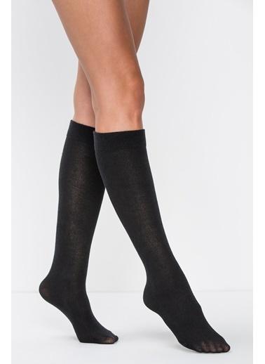 Penti Angora-Yün Karışımı Pantolon Çorabı Siyah